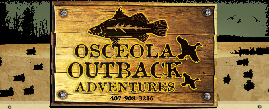 Osceola Outback Florida Fishing and Hunting Guide